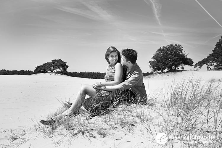 Loveshoot zandvlakte 't Harde